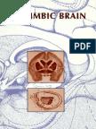 Limbic Brain - Andrew Lautin 2002