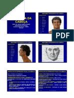 Anatomia Topografica Da Cabeca-2009