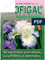 Revista_Hofigal_nr_11