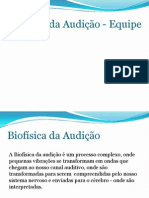 APRESENTAÇÃO BIOFÍSICA DA AUDIÇÃO 2 período