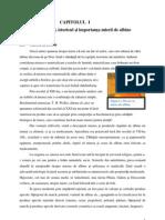 Licenta PDF de Scos- Lucrarea