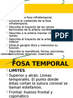 11 Fosa Infra Temporal Fosa Mandibular