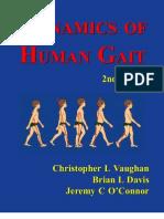 Dynamics of Human Gait