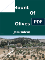 Jerusalem Mount of Olives C