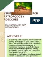 ARBOVIRUS 2