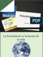 exposicion Fotosíntesis IV parcial  {+.+}