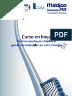 curso_linea (1)