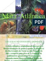mata-atlntica-1220301251627860-9