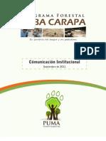 Carpeta Comunicación 2011 PUMA FA