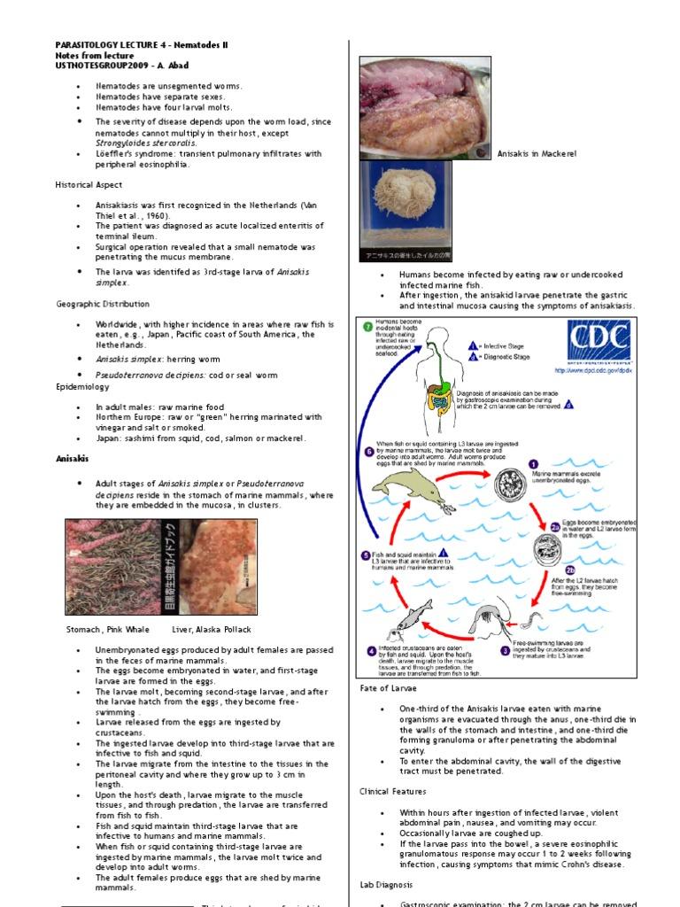 Parasitology lec 4 anisakis u 2006 for Mucus fishing syndrome