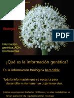 ADN ion Genetica BIO I 2C2011