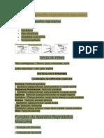 Anatomia Aparelho Reprodutivo Masculino