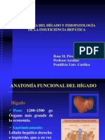 anatomiafisologia-higado