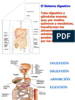 digestivo_1