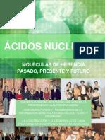 7_ACIDOS (1)