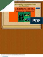INEI - Metodología para la elaboración de un plan de sistemas de información
