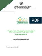 69929_Informe__Informe_nacional__PERU