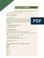 PROYECTO PALTO TORATA