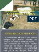 INSEMINACIÓN ARTIFICIAL EN CAPRINOS Y OVINOS