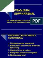 fisiopatologiasuprarrenalusjb2010-100605211413-phpapp01
