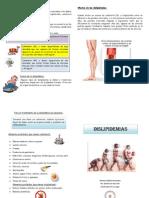 La dislipidemia es un conjunto de enfermedades asociadas a los lípidos