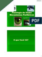 Fisiologia Da Visao - Mecanismos Perifericos RT