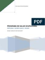 PROGRAMA DE SALUDOCUPACIONAL