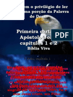 BibliaViva_1João1e2