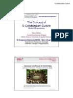 The Concept of E-Collaboration Culture