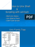 Tcsh Scripting Mcsr Basic