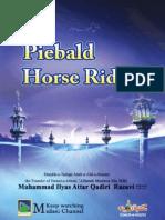 Piebald Horse Rider (www.trueislam.info)