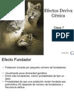 Clase 7 -Efectos Deriva Genica