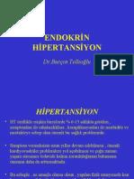 Endokrin Ht