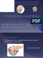 CA de Pancreas Terminda Completa Por Fin