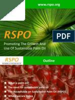RSPO Presentation Extended