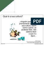 Cultura Peixe