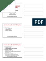 Droit de l'Entreprise > Introduction > Entreprise_2006