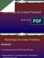 Morfo Da Coluna Vertebral