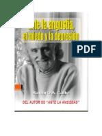 27129473 Ramiro Calle Ante La Ansiedad
