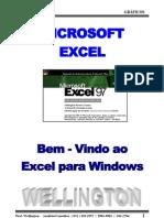 Livro de Graficos No Excel