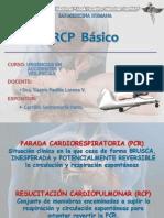 RCP Básico 2010