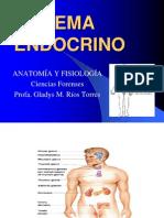 Anat. y f Sistema Endocrino 2007