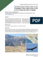 Stucchi y Figueroa 2010 - Descripción de las interacciones tróficas entre el Cóndor Andino y otras especies en el Colca