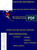 La Neurofisiologia Del Movimiento