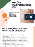 MALFORMAÇÕES CONGÊNITAS POR FATORES GENÉTICOS