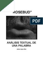Analisis Textual de Una Palabra