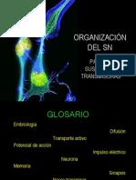 Clase3-Sn II Sustancias Transmisoras
