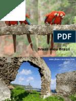 Brazil Meu Brasil
