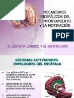 Clase11-Mecanismos Encefalicos Comport a Mien To Motivacion