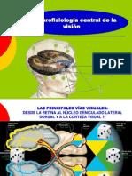 Clase17 El Ojo III Neurofisiologia Central de La Vision